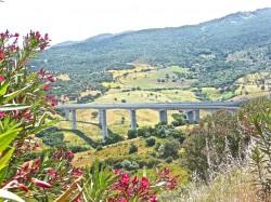 Link2 (bridge)